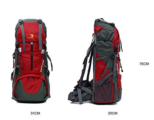 60L Outdoor-Bergsteigen Tasche Wanderrucksack Tourismus Profi Rucksack Black l31LrrgI