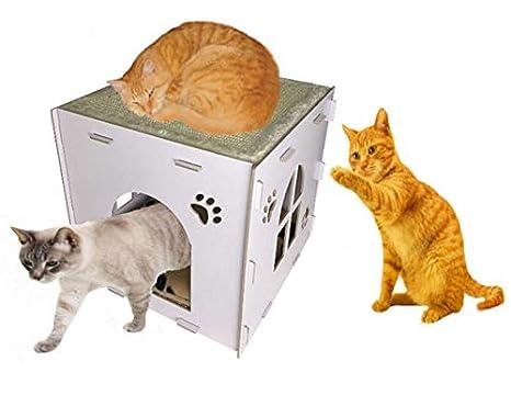 HERITAGE PET PRODUCTS Heritage CT4 - Caja de cartón para gato con diseño de chorro, para chupito de casa: Amazon.es: Productos para mascotas