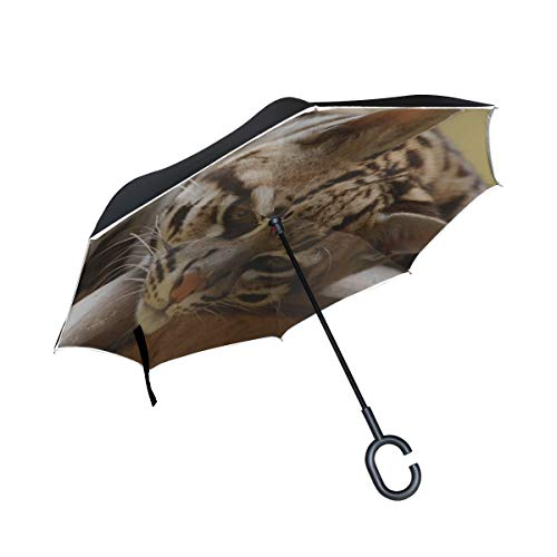 (Rh Studio Inverted Umbrella Rain Sun Car Reversible Umbrella Ocelot Wild Cat Predator Face Cat Large Double Layer Outdoor Upside Down Umbrella with Women with Uv Protection C-Shaped Handle)