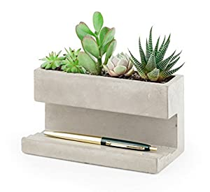 Kikkerland Concrete Desktop Planter, Large (PL02-L)