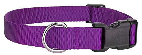 Scott - Adjustable Rib Nylon Purple Dog / Puppy / Cat Collar Size: Small 6