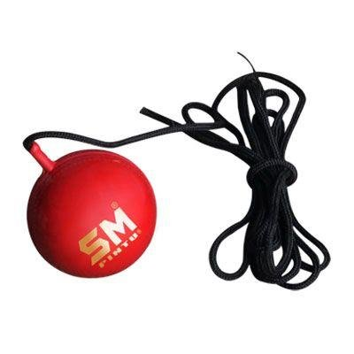 SM Leather, Synthetic Cricket Ball (5.5oz, SM (Pintu Synthetic With Rope)) (Bat Speed Radar)