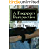A Preppers Perspective: Southern Prepper Fiction (A Preppers Perspective Omnibus)