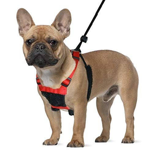 Dog Harness – No pull and No choke humane Design, Non Pulling Pet Harness with Mesh vest, Easy Step-in Adjustable Mesh…