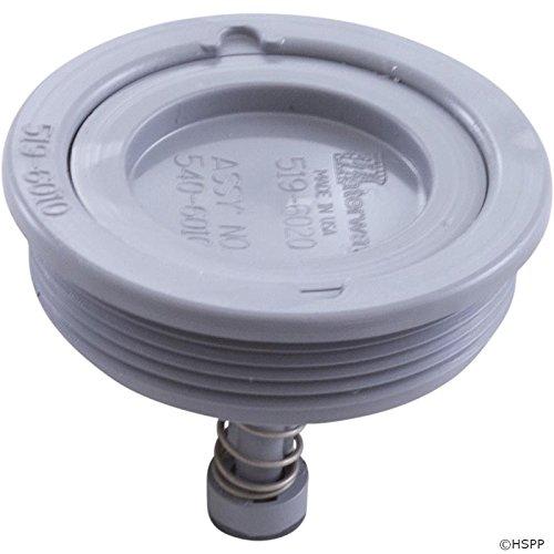 Skimmer Equalizer Valve, Waterway Renegade | 540-6010 by Waterway Plastics (Image #1)