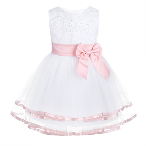 iiniim Infant Baby Flower Girl Dress Embroidered Baptism Christening Gown Party Wedding Dress with Panty Pearl Pink 12-18 Months (Panties Baby Fancy)