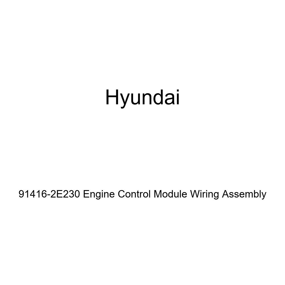Genuine Hyundai 91416-2E230 Engine Control Module Wiring Assembly