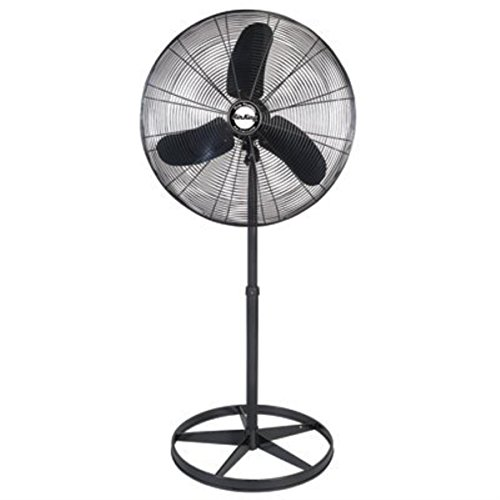 (Air King 99532 Pedestal Fan, 30