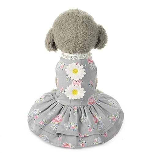 Axchongery Dog Dress, Funny Pet Bow Tutu Vest Lace Puppy Skirt Cat Princess Doggy Clothes (Gray, M)