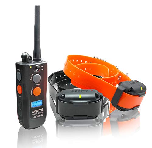 Dogtra Extreme Consumer Products Traning Collar Super X 3500NCP Dog Traning Collar with Remote – Rechargable Dog E…