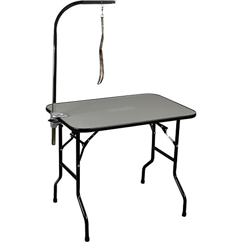 Precision Pet 7088362 Professional Grooming Table, 36