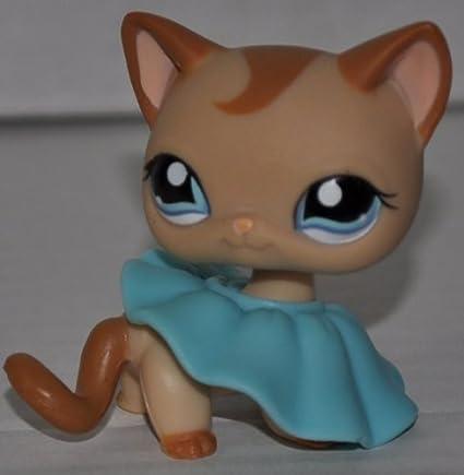 Amazon.com: Gato # 1024 (Bronceado, ojos azules, café ...