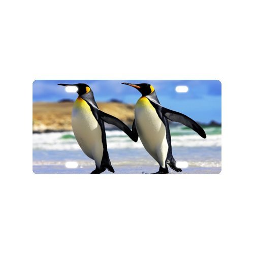 Penguin License Plate with Vivid color and Detail Images-12