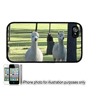 Llamas Photo Apple iPhone 4 4S Case Cover Black