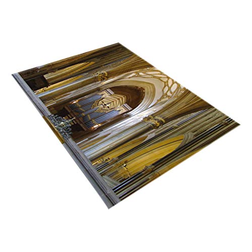 - Topgee Creative Notre Dame Photo Commemorative Day Comfortable Carpet Home Decor Any Space Bathroom Rugs for Master, Kid's, Guest Bathroom
