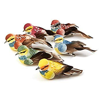 Assorted color Mushroom Birds with Feather Tail   6 Birds   for Indoor Decor