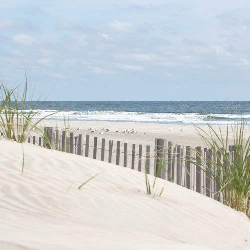 Buy free beaches in nj