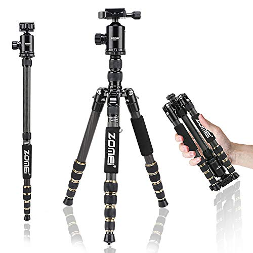ZOMEI Z699C Carbon Fiber Portable Tripod with Ball Head Compact Travel for Canon,Sony, Nikon, Samsung, Panasonic, Olympus, Kodak, Fuji, Cameras and Video Camera (Best Compact Dslr For Travel)