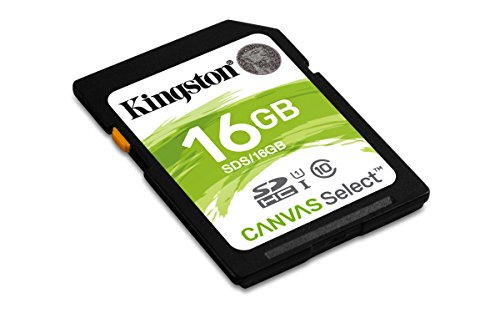 Buy 16 gb sd cards class 10