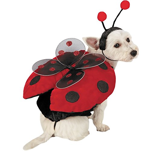 Halloween Costumes For Pets And Owners (Ladybug with Wings Dog Costume SMALL)