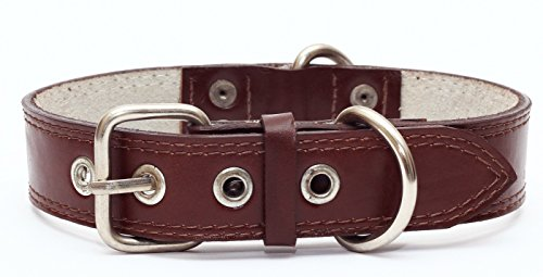 Premium Leather Collars with Stainless Steel Buckles (18