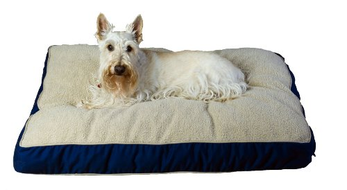 Cpc Four Season Large Pet Bed with Cashmere Berber Top, - Dog Bed Berber