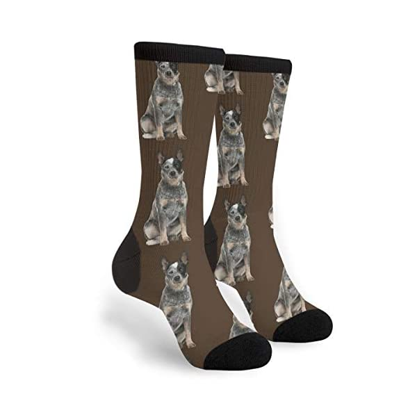 Packsjap Australian Cattle Dog Men & Women Casual Cool Cute Crazy Funny Athletic Sport Colorful Fancy Novelty Graphic Crew Tube Socks 1