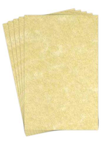 Astroparche - Ancient Gold Parchment 65lb Cover Stock - Size 11x17 - 50 Per Pack. ()