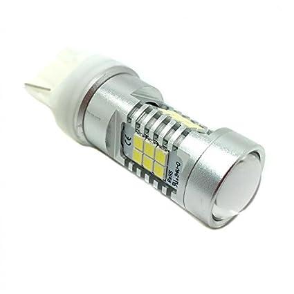 Zesfor® Bombilla LED T20 CANBUS - Tipo 45: Amazon.es: Coche y moto
