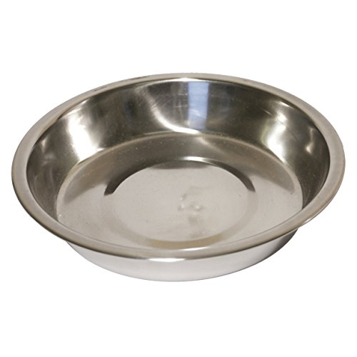 Stainless Steel Shallow Puppy Pan 6