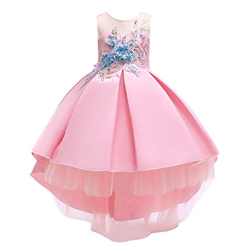 (AIMJCHLD Party Dress for Toddler Little Baby Girls Flower Wedding Dresses Pageant Prom Ball Gowns Fancy Performance Formal Dress with Applique Size 3T 4T (Pink 100))