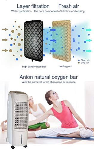 doppia ventola e display Led Condizionatore portatile ad acqua 1000W con Serbatoio 12 Litri Raffrescatore ad acqua con telecomando