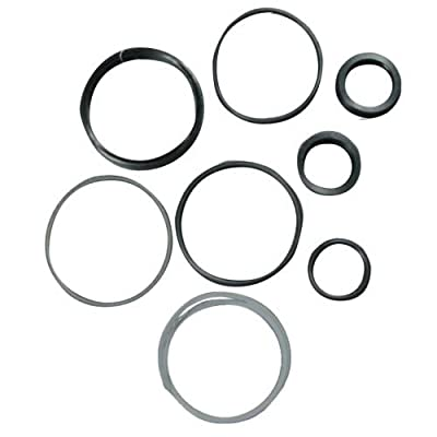 Complete Tractor 1201-1260 Seal Kit for Massey Ferguson Tractor 245 255 261-1606890M91 1606890V91, 1 Pack: Automotive