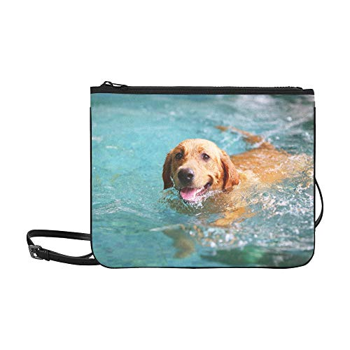 Happy Dog Swimming Dog...