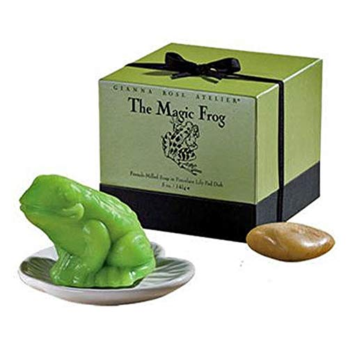 Gianna Rose Atelier The Magic Frog in Porcelain Lily Pad Dish