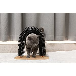 Hollypet Cat Arch Groom Scratcher Toy Pet Hair Cleaner Toy