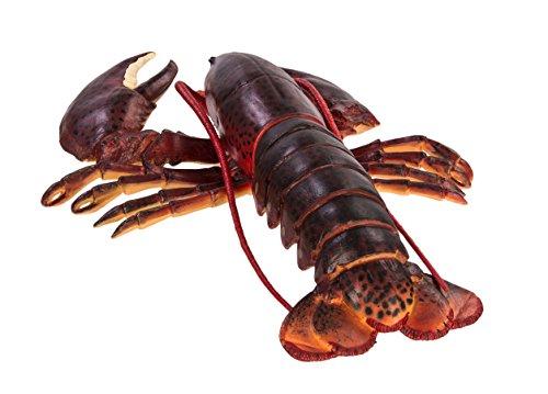 Safari Ltd  Incredible Creatures Maine Lobster