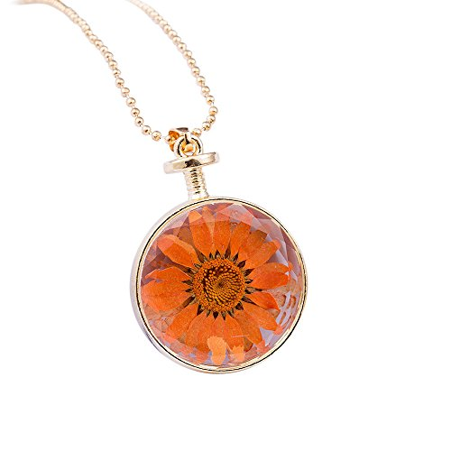 Muranba Women Round Glass Dried Flowers Pendant Alloy Necklace (Orange)