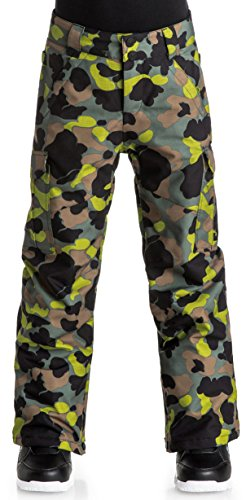 DC Boys Youth Banshee Insulated Snowboard Pants