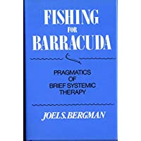 Fishing for Barracuda: Pragmatics of Brief Systemic Theory