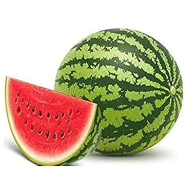 QiBest 10 pcs/Bag Red Watermelon Seeds Home Garden Plant Seeds Fruits : Garden & Outdoor