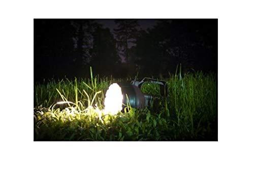 Rayovac Brite Essentials 35-Lumen LED Flashlight (Battery Included)