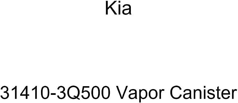 Kia 31410-3R500 Vapor Canister