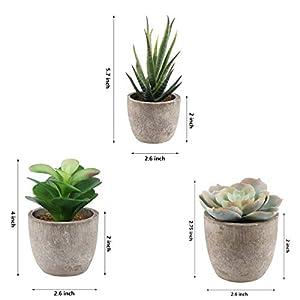 Yoodelife Artificial Faux Succulents Decorative Fake Cactus Aloe Cacti Plants Gray Pots, Realistic Looking Assortments 3