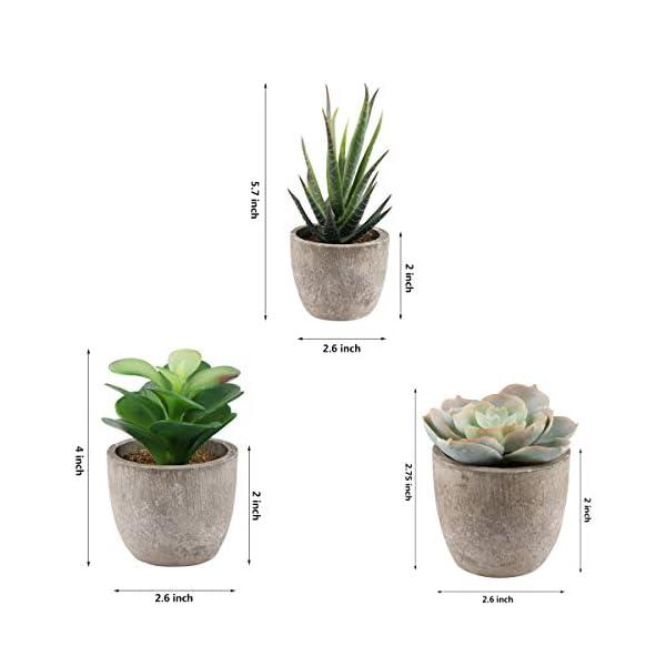 Yoodelife-Artificial-Faux-Succulents-Decorative-Fake-Cactus-Aloe-Cacti-Plants-Gray-Pots-Realistic-Looking-Assortments
