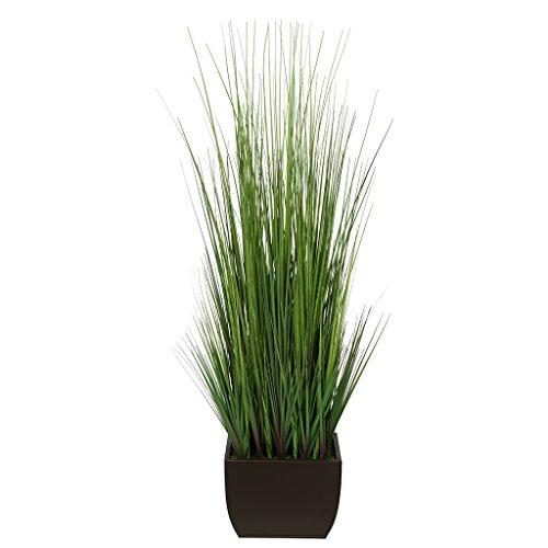 Brown Grass - 5