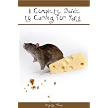 A Complete Guide to Caring For Rats