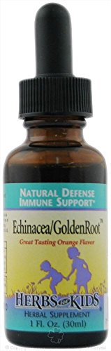 HERBS FOR KIDS ECHINACEA/GLDN ROOT ORNGE, 1 FZ