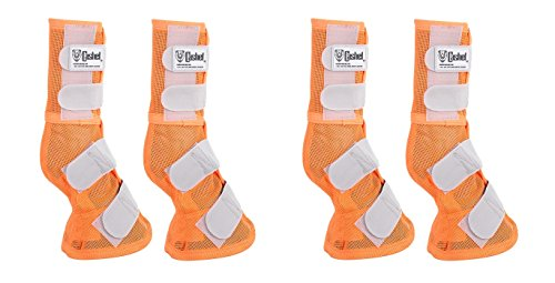 - Cashel Crusader Horse Protection Fly Leg Guards, Designer Style, Set of Four, Orange, Horse