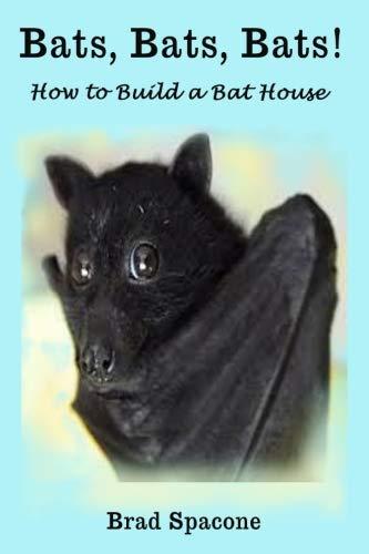 Bats, Bats, Bats!: How to Build a Bat House